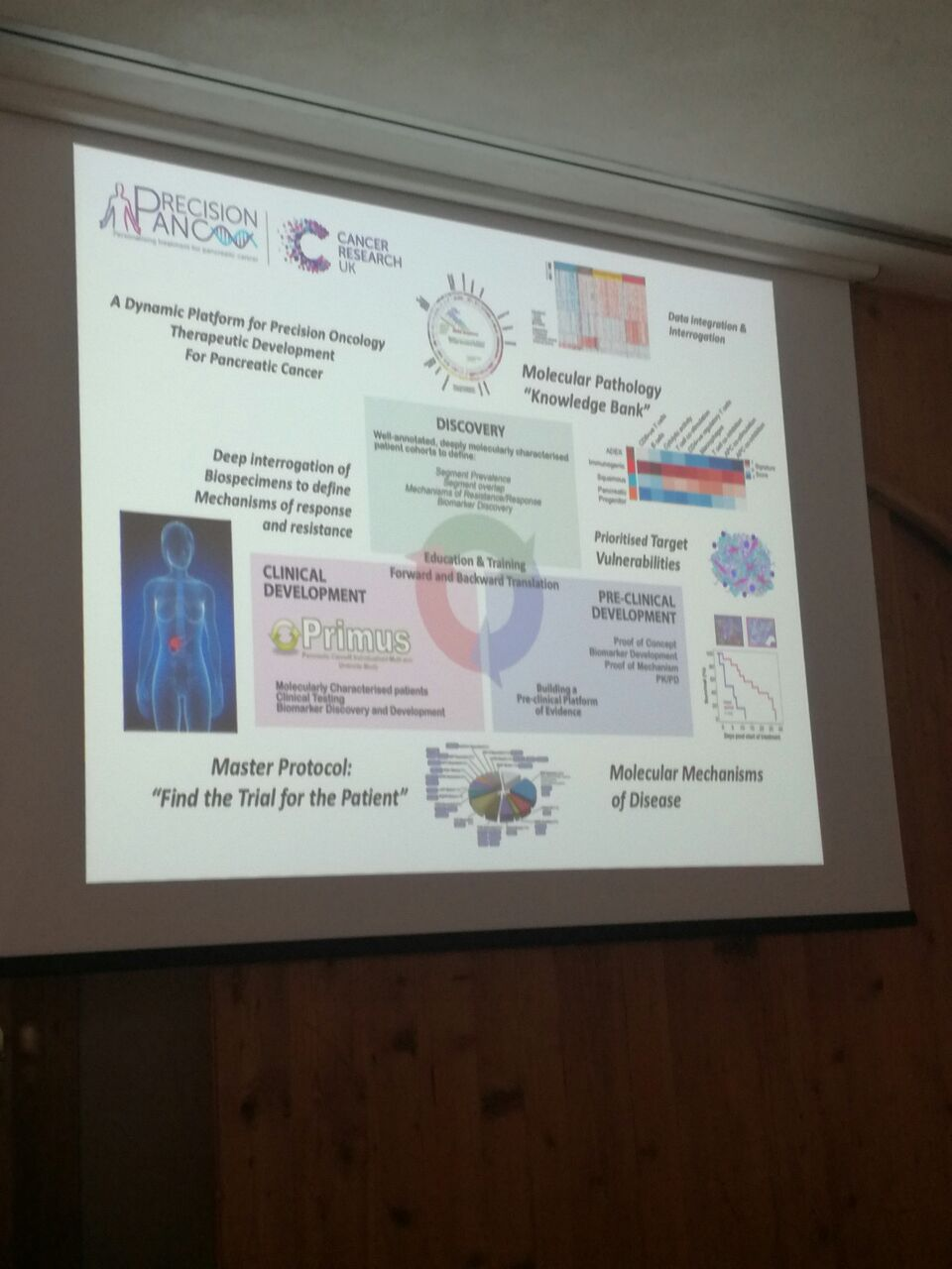 Μοριακή Βιολογία & Καρκίνος Παγκρέατος